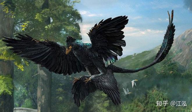 Microraptor có màu lông đen ánh cầu vồng tương tự như loài quạ.