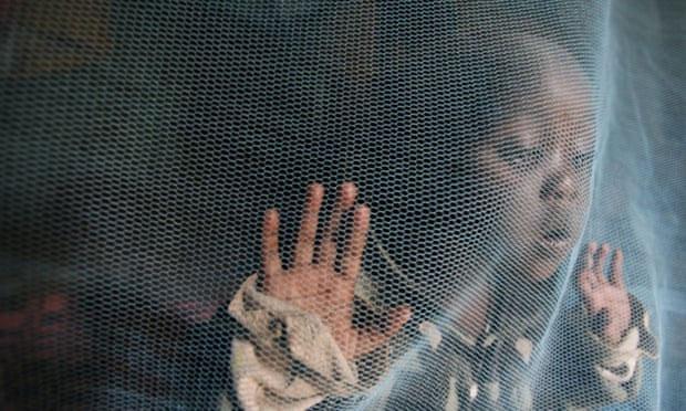 Một đứa trẻ ở Nairobi chơi trong màn chống muỗi.