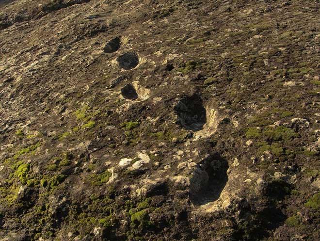 Những dấu chân hóa thạch trên núi lửa Roccamonfina