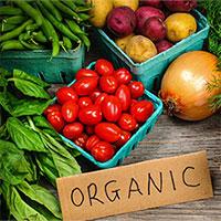 Việt Nam sẽ có cổng truy xuất nguồn gốc sản phẩm nông nghiệp
