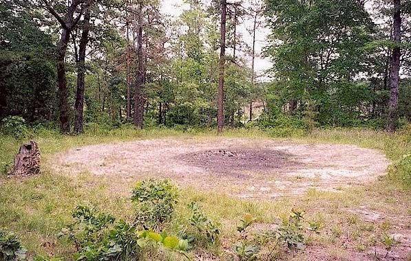 Một mảnh đất nhỏ không có cây cối mọc lên, trừ ít cỏ lơ thơ.