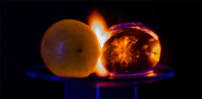 Nho tạo ra tia lửa trong lò vi sóng
