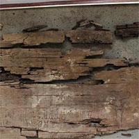 """""""Bản đồ địa ngục"""" trong quan tài 4.000 năm tuổi"""