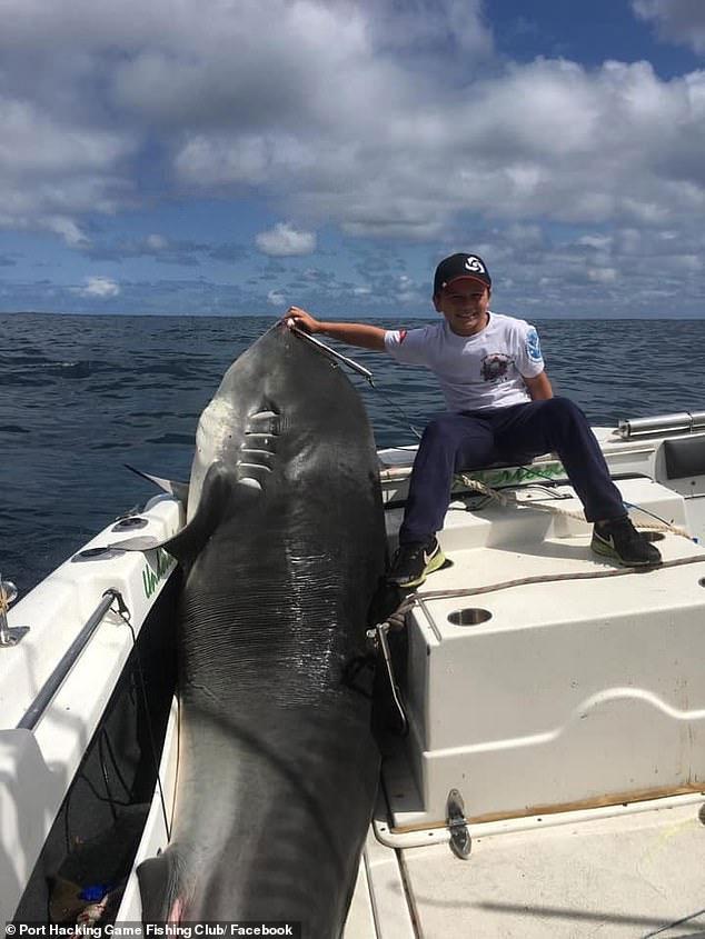 Jayden Millauro và con cá mập hổ 314kg.