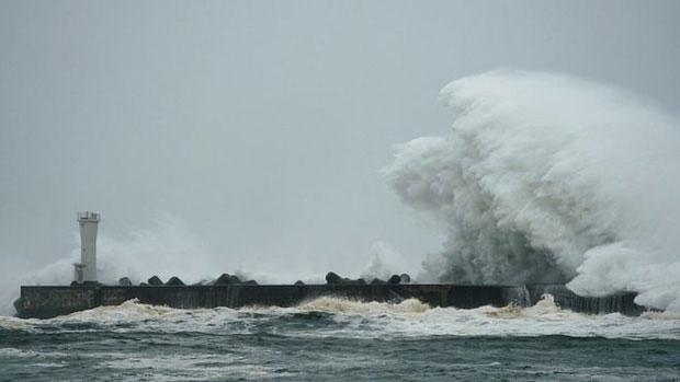 Chính quyền Tokyo khác đã yêu cầu Lực lượng phòng vệ mặt đất hỗ trợ sơ tán, cứu hộ và phục hồi sau bão