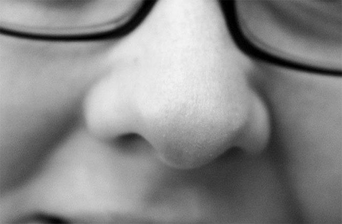 Chọn lọc tự nhiên có khả năng đóng vai trò quan trọng trong quá trình tiến hóa mũi của con người.