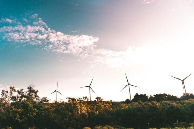 Quá trình phát triển của ngành điện tái tạo sẽ là một tín hiệu đáng mừng cho nhân loại
