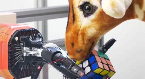 Nhóm nghiên cứu đã can thiệp vào các nhiễu loạn nhẹ cho robot để xem liệu nó có thể xử lý các sự cố bất ngờ không