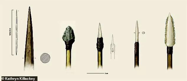 Hình vẽ mô tả các vũ khí được tìm thấy