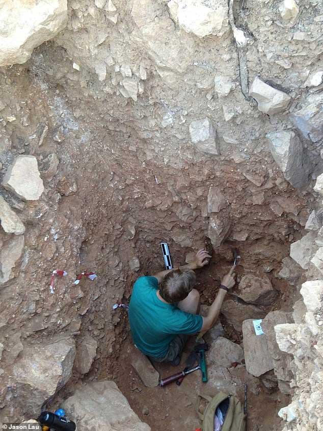 Một nhà khảo cổ đang khai quật hiện trườn