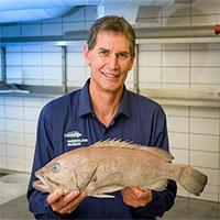 Phát hiện loài cá mới chưa từng được biết đến ở Úc