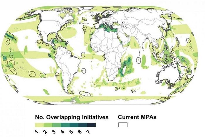 Hầu hết các khu vực biển quan trọng không nằm trong khu vực bảo tồn biển.