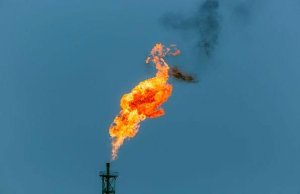 Tất cả quá trình hút carbon dioxide này đều diễn ra tại môi trường bình thường.