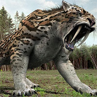 Thiên thể rơi xuống Trái đất, tiêu diệt hổ răng kiếm 13.000 năm trước