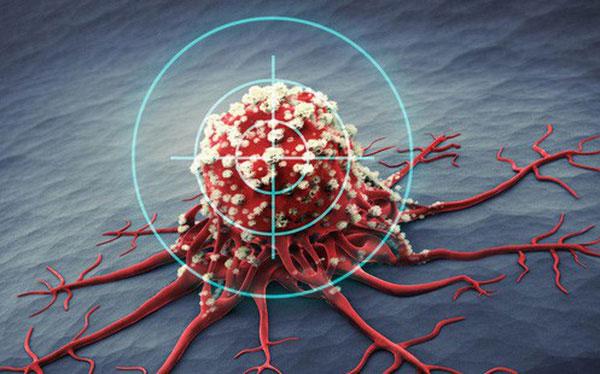 Gene KRAS điều khiển hoạt động của một loại protein kiểm soát quá trình phát triển của tế bào.
