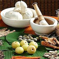 Bài thuốc Đông y hỗ trợ phòng trị sốt xuất huyết