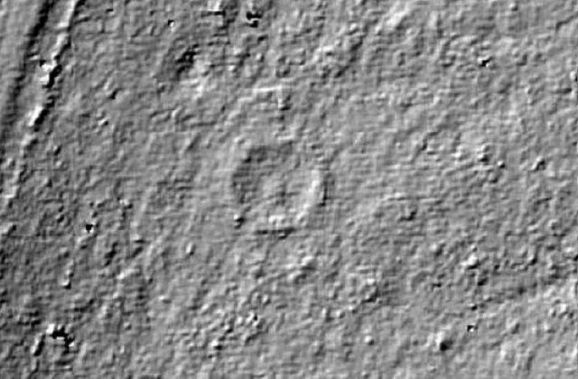 Hình ảnh LiDAR cho thấy cấu trúc hình tròn ẩn dưới cây rừng.