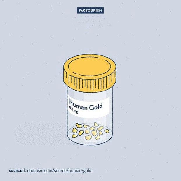 Trong cơ thể chúng ta có vàng