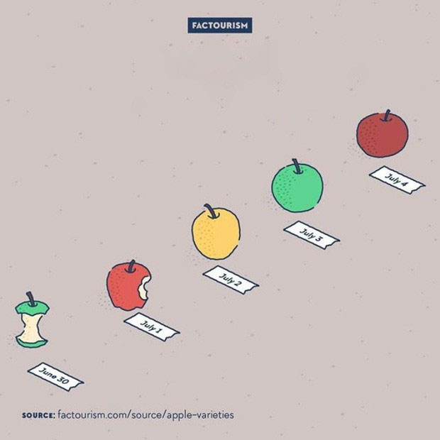 Có rất nhiều loại táo trên thế giới