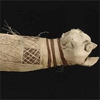 Xác ướp mèo nghìn năm có 5 chân và 3 đuôi