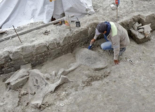 Địa điểm khai quật nằm gần thủ đô Mexico City