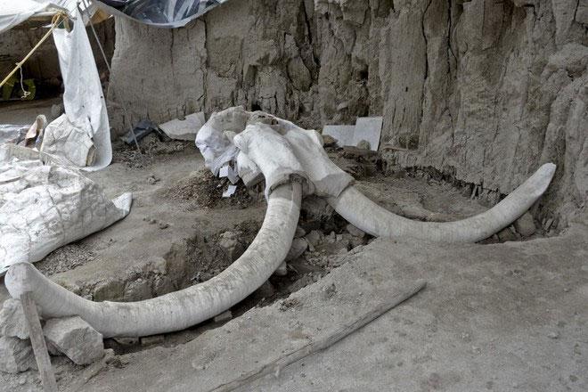Các nhà nghiên cứu ước tính hố bẫy được đào từ gần 15.000 năm trước.