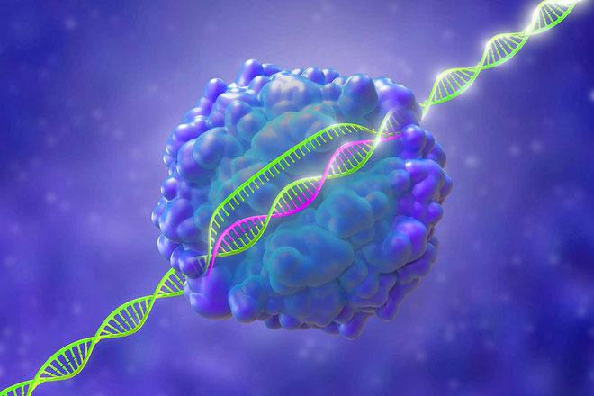 Liệu CRISPR, công cụ chỉnh sửa gene hiện đại nhất có giúp chúng ta đánh vào gốc rễ của bệnh ung thư?