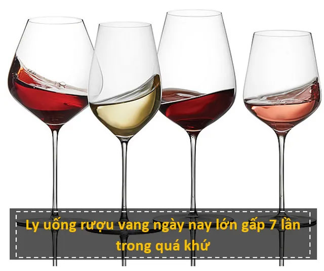 Ly uống rượu vang ngày nay lớn gấp 7 lần trong quá khứ
