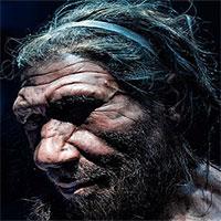 """Một loài người khác tuyệt chủng vì """"hôn phối tử thần"""" với tổ tiên chúng ta"""