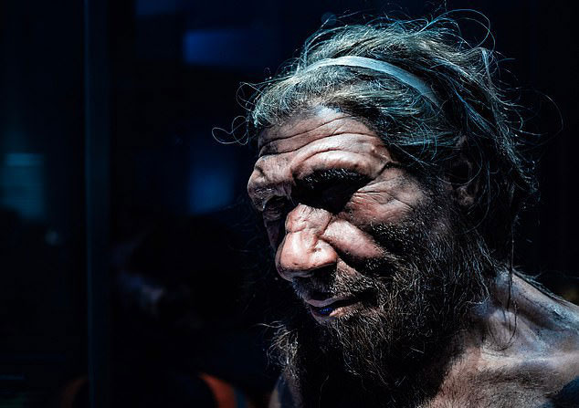 Một tượng sáp mô tả chân dung người Neanderthals