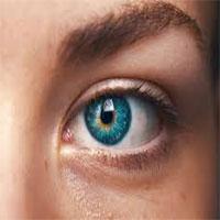 Những điều lý thú về đôi mắt
