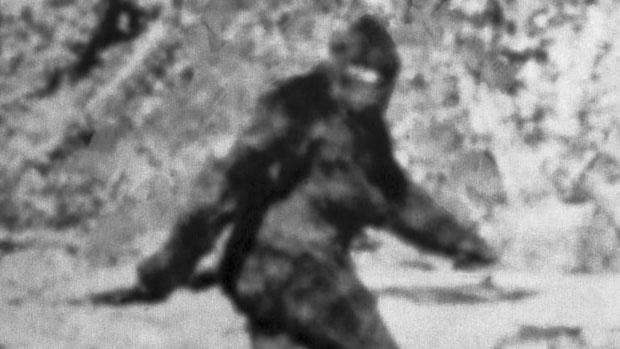 Sinh vật bí ẩn được cho là Bigfoot.