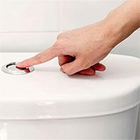 Loại sơn mới giúp giảm một nửa lượng nước xả bồn cầu