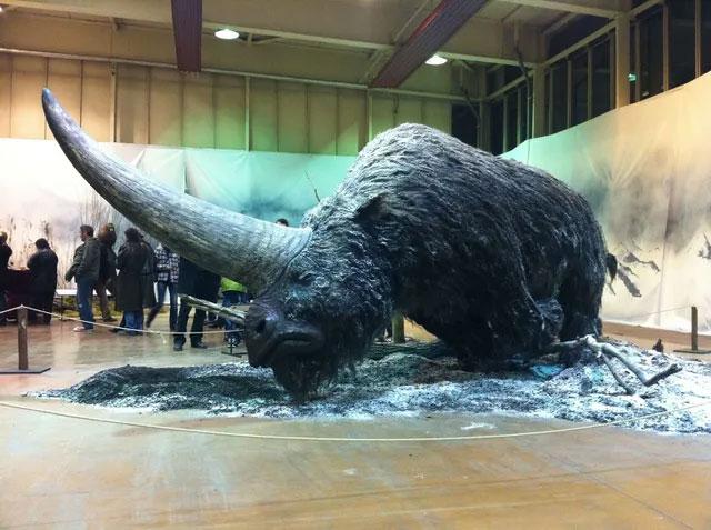 """Cách đây 29.000 năm, chú """"kỳ lân"""" này thực sự tồn tại trên Trái Đất."""