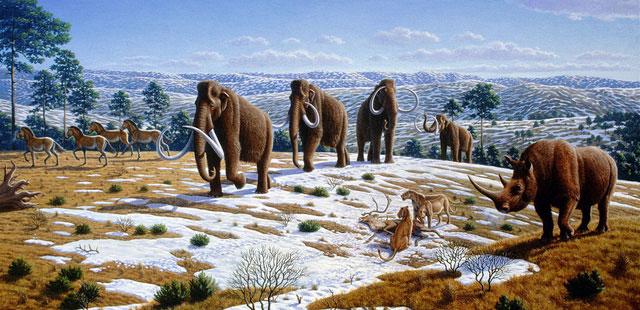 Sự tuyệt chủng Đệ Tứ