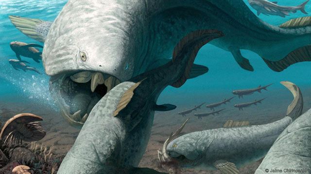 Sự kiện tuyệt chủng Devon muộn