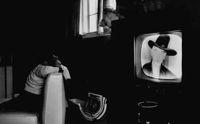 Một chú tinh tinh có tên Zippy đang ngồi chăm chú xem TV.