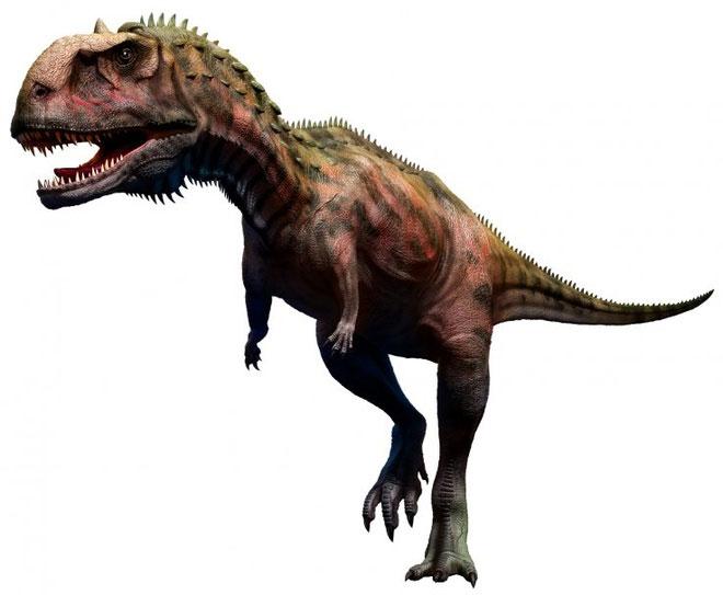Majungasaurus, sinh sống tại khu vực Madagascar trong khoảng thời gian từ 66-70 triệu năm trước