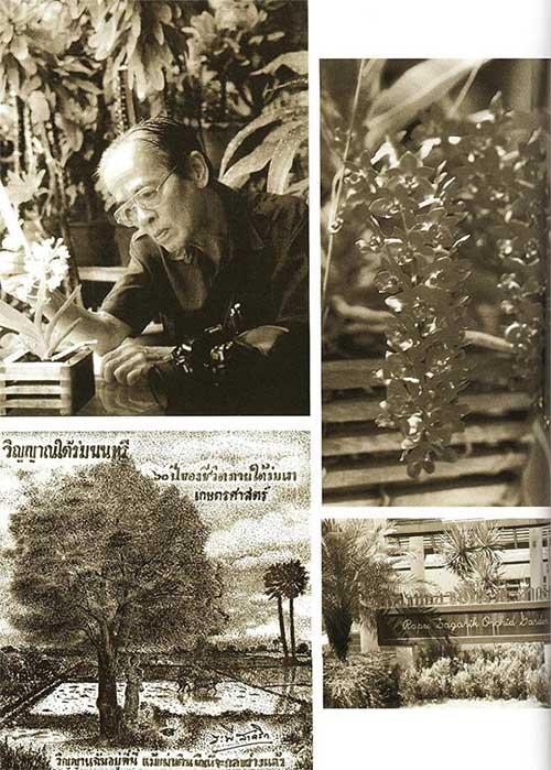 Cả cuộc đời Giáo sư Rapee Sagarik gắn liền với hoa lan.