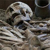 Phân tích đồng vị Carbon là gì? Tại sao nó có thể xác định niên đại trong khảo cổ?