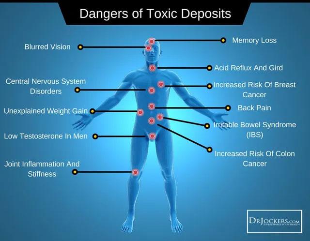 Cơ thể con người sở hữu hệ thống cơ chế thải độc tự nhiên để tự điều chỉnh