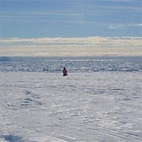 """Não các nhà khoa học """"co"""" lại sau chuyến thám hiểm Nam Cực"""
