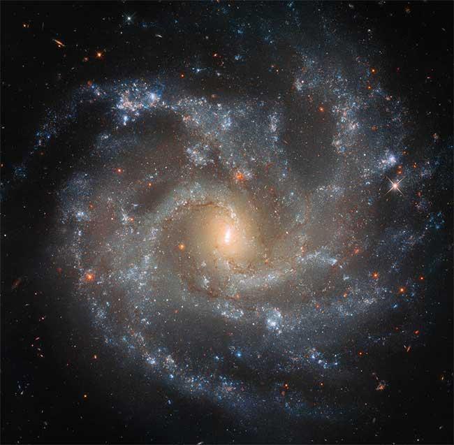 Ảnh thiên hà NGC 5468 chụp bởi kính viễn vọng Hubble.