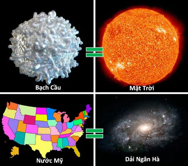 Nếu Mặt Trời có kích thước bằng 1 tế bào bạch cầu trong cơ thể, dải Ngân hà sẽ lớn tương đương nước Mỹ.