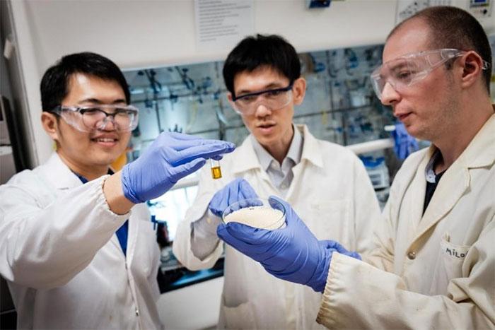 PGS Soo Han Sen (giữa) và nhóm nghiên cứu Đại học Công nghệ Nanyang (Singapore)