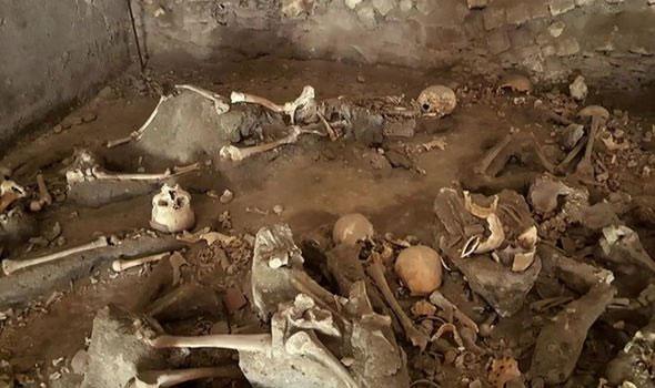50 bộ xương được chia làm hai nhóm người khác nhau.