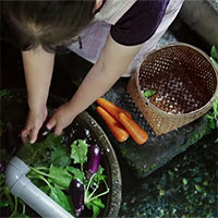 """""""Giải mã"""" hệ thống lọc nước bằng cá chép của người Nhật khiến cả thế giới thán phục"""