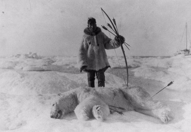Những người sống ở vùng cực có triệu chứng ngộ sau khi ăn gan gấu bắc cực