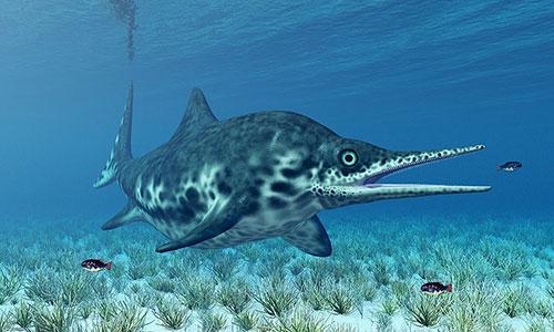 Hình ảnh phục dựng thằn lằn cá của nghệ sĩ Michael Rosskothen.