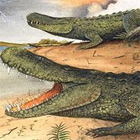 Cá sấu tiền sử nặng 3 tấn và dài bằng xe buýt